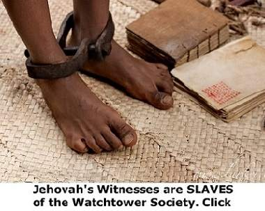 jehovah's witnesses answered taking in knowledge
