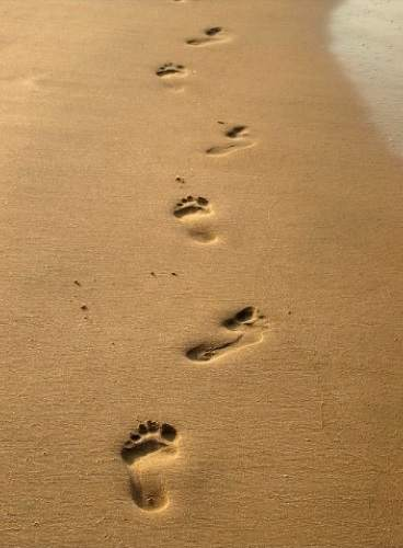 https://www.evangelicaloutreach.org/images/footsteps-in-the-sand.jpg