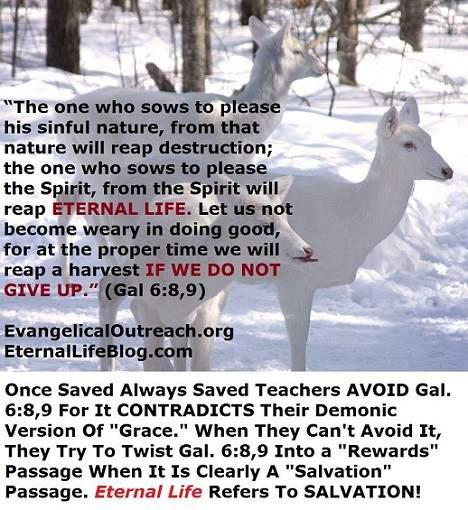 once saved always saved eternal security
