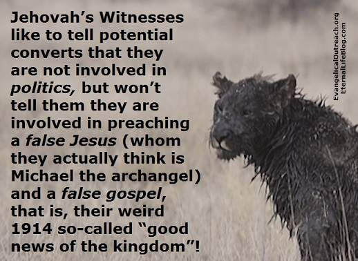 jehovahs witnesses politics