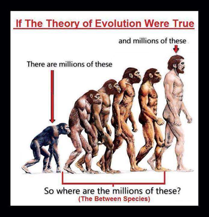 evolution is a lie