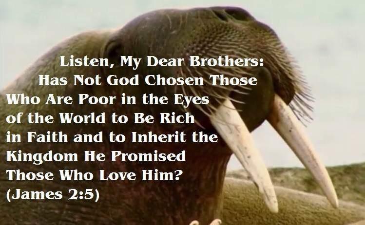 poor inherit the promised kingdom
