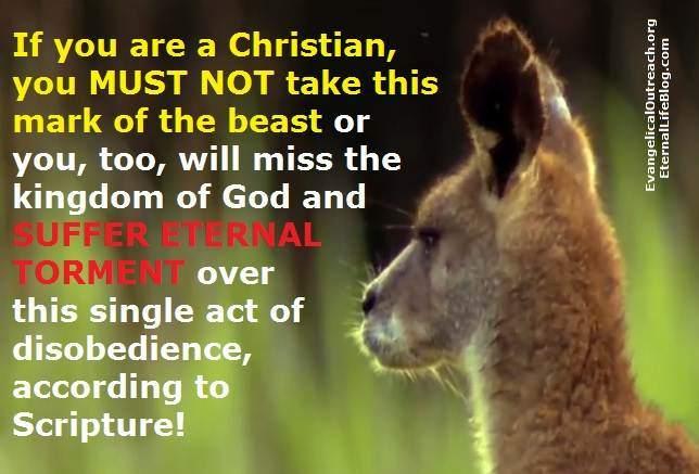 post tribulation rapture
