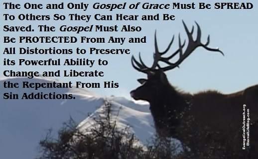 spread the gospel protect the gospel