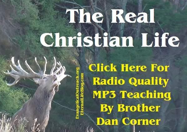 real christian life