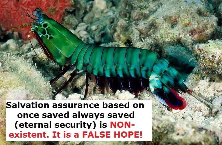 salvation assurance
