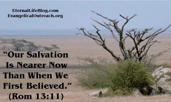 salvation quiz experiences