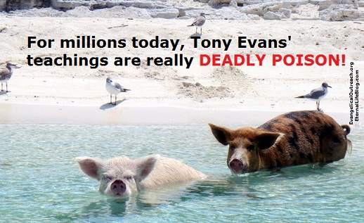 tony evans deadly poison