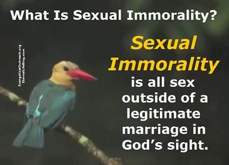 what is sexual immorality